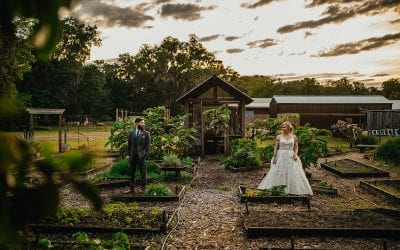 Shanna + Chris's Whimsical Forest Wedding