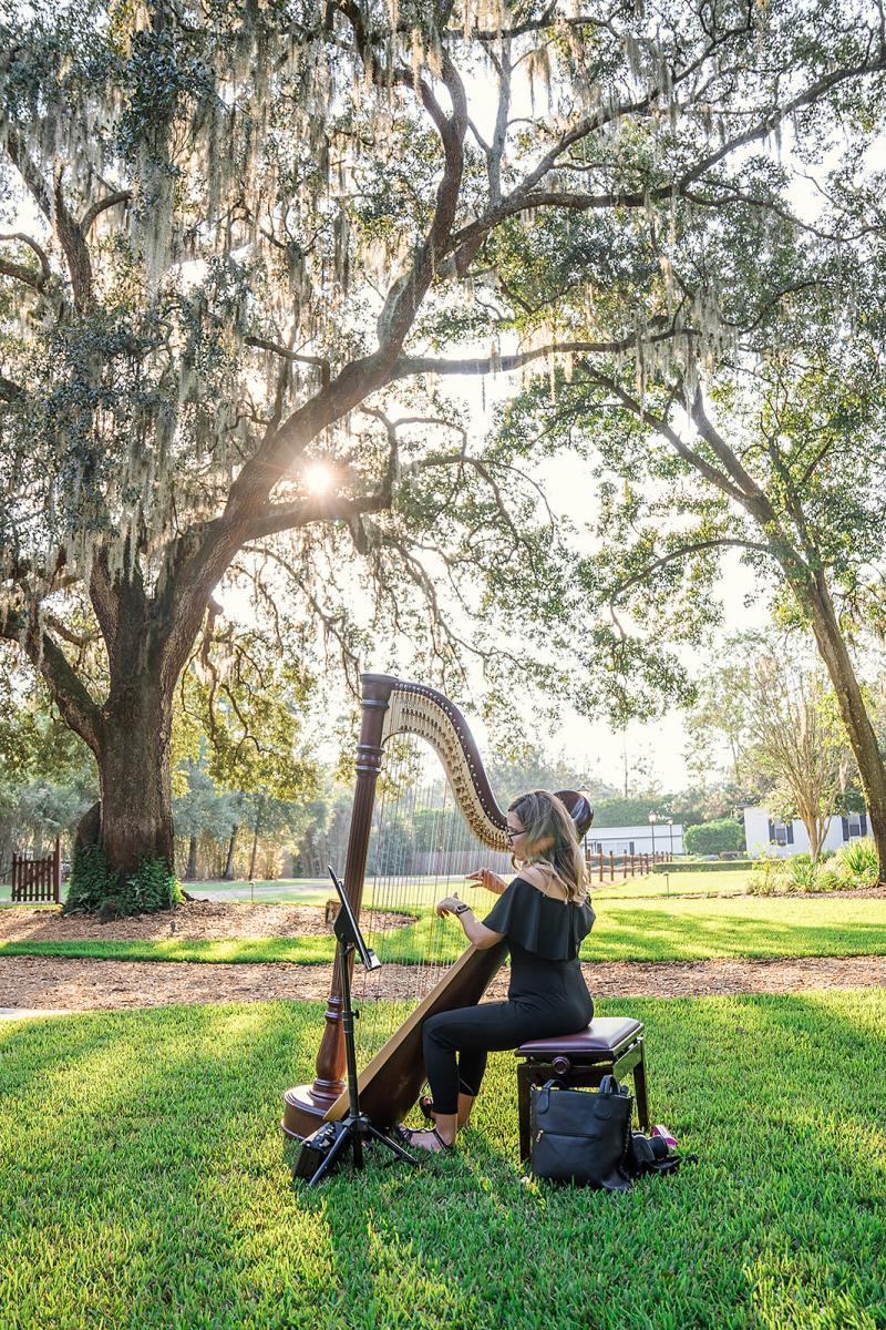 Harpist for an intimate wedding