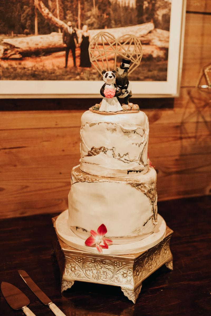 Sadie and Kiran's wedding cake with dinosaur cake toppers