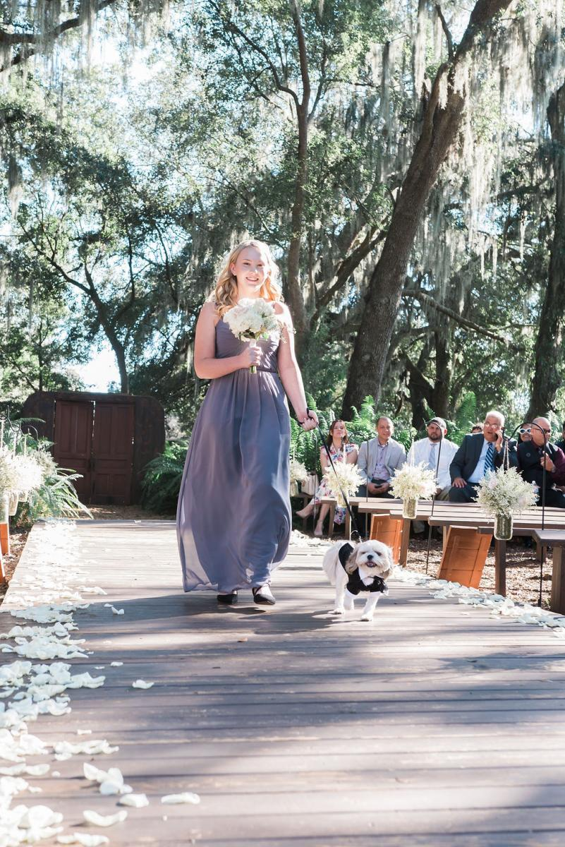 Lucas, their dog, walking down the aisle