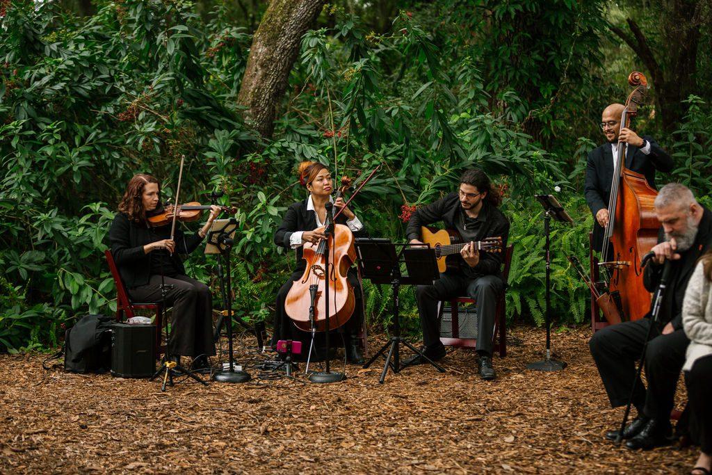 String quartet for wedding ceremonies
