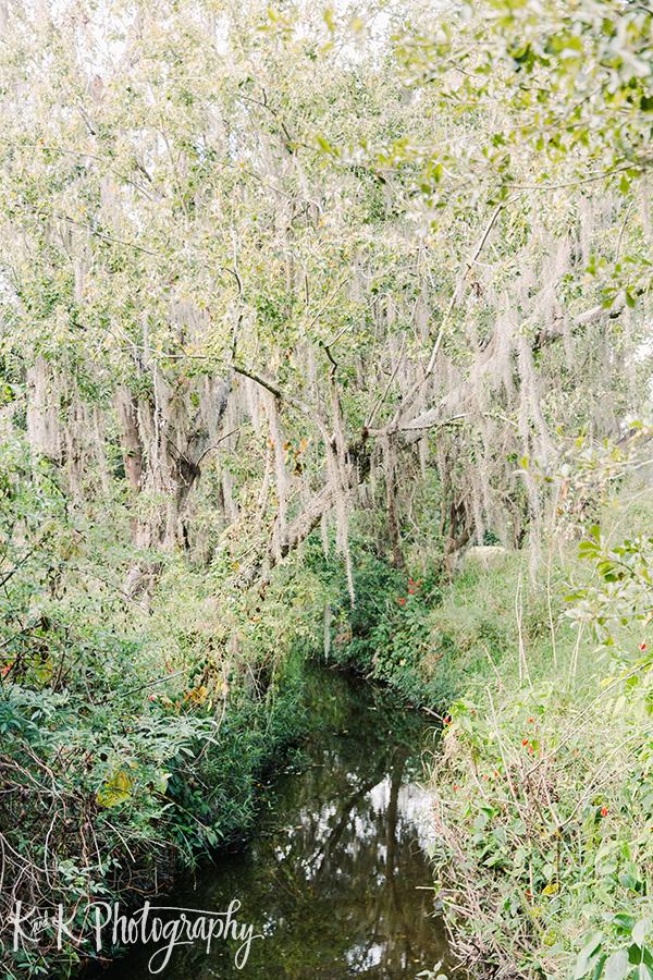 The creek at Cross Creek Ranch
