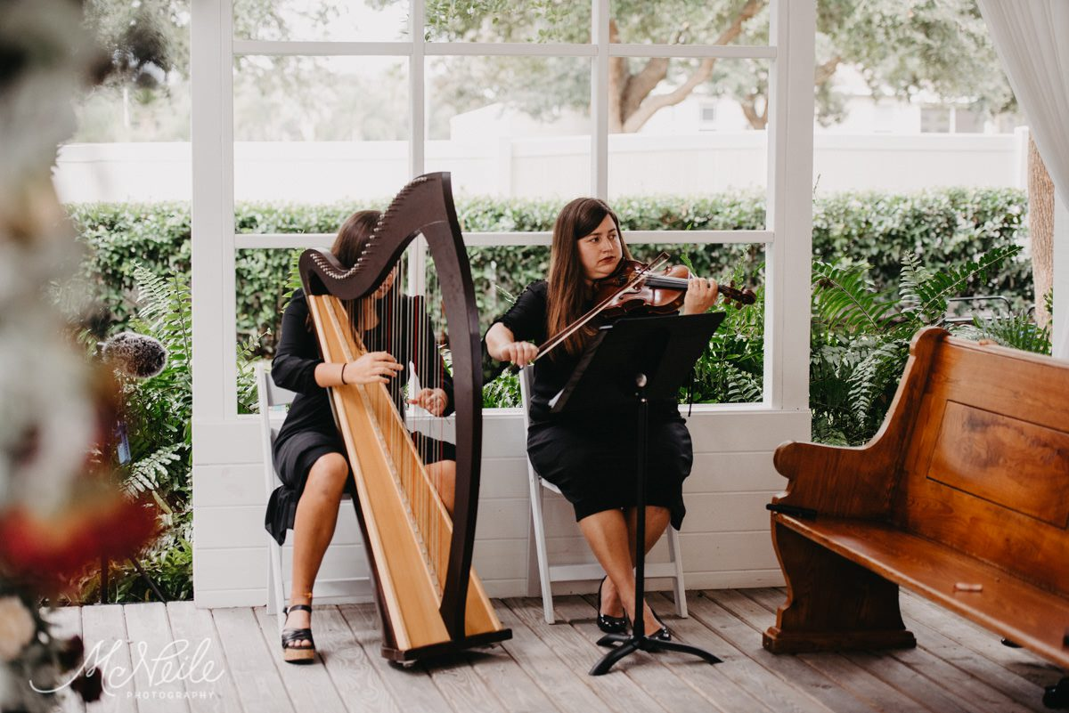 Live harpist and violinist played at their ceremony