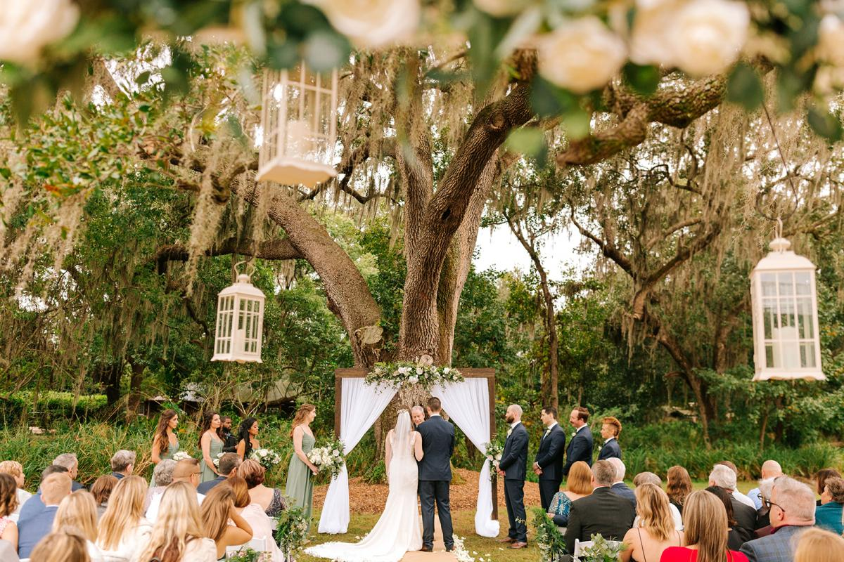 Caitlin and Michael's gorgeous white and sage Oak Tree Wedding