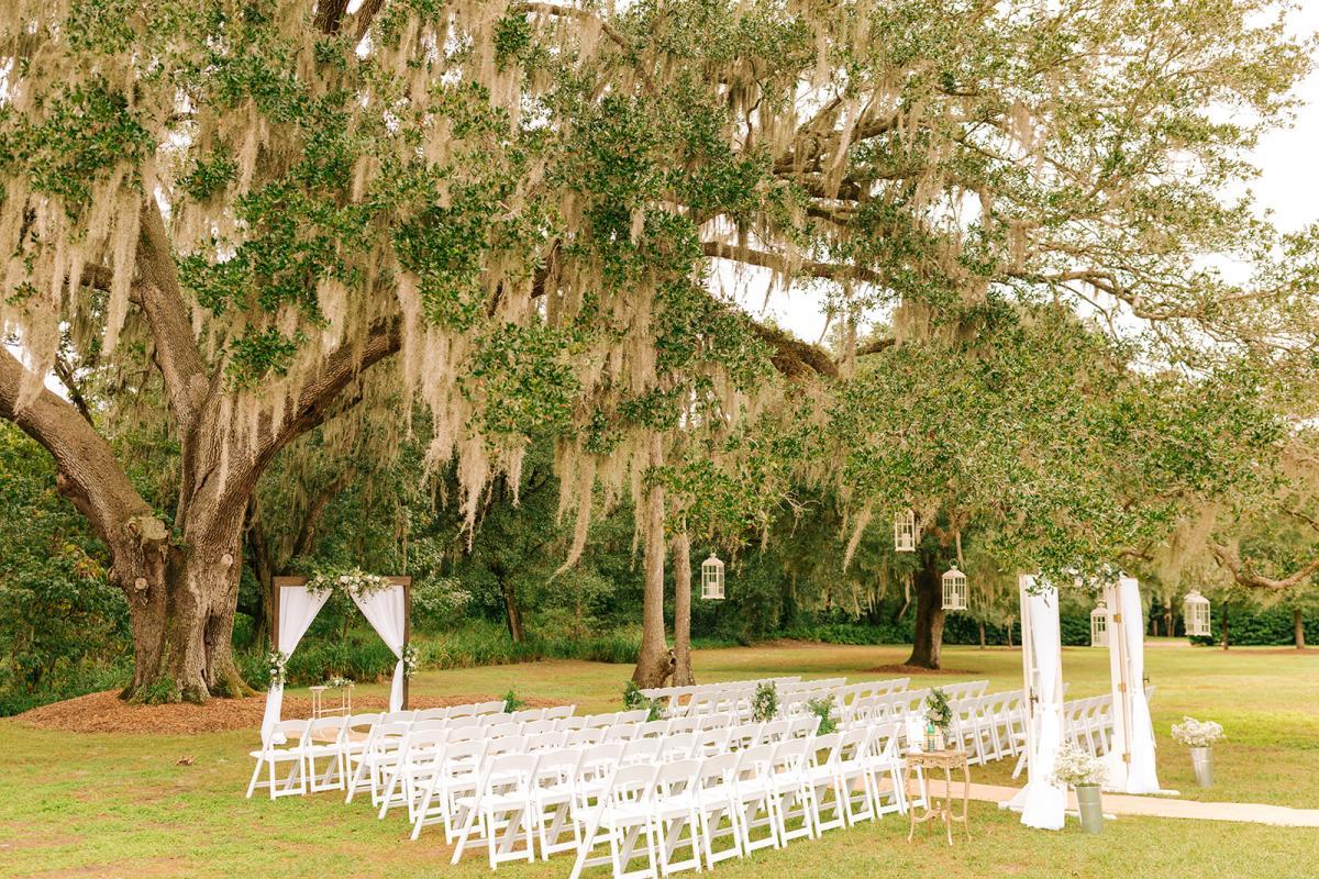 Caitlin and Michael's Oak Tree wedding