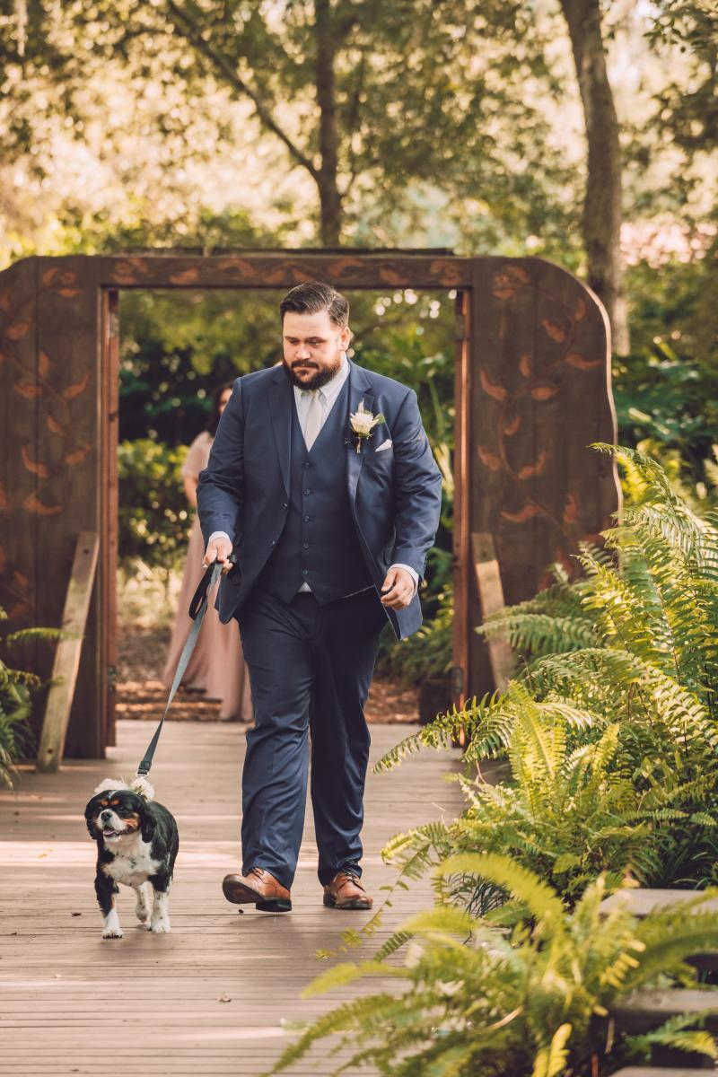 Nick walking his dog down the aisle