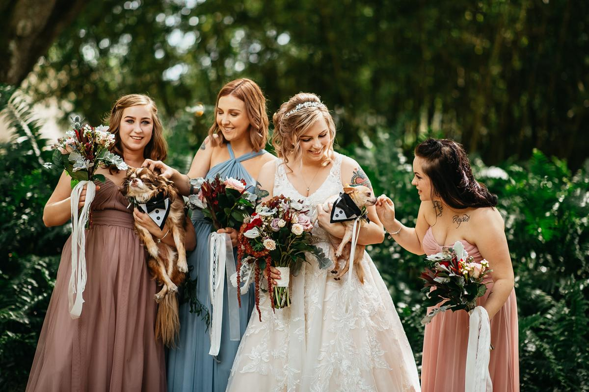 Shanna and her bridesmaids with the dogs of honor